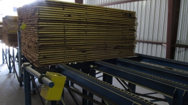 Side view of lumber on Froedge infeed deck